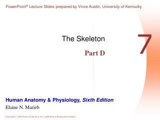 The Skeleton Part D