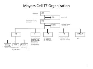 Mayors Cell TF Organization
