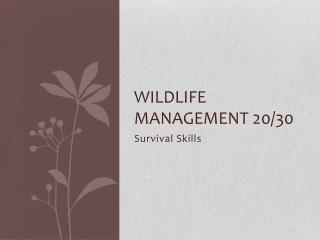 Wildlife management 20/30