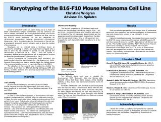 Karyotyping of the B16-F10 Mouse Melanoma Cell Line Christine Widgren Advisor: Dr. Spilatro
