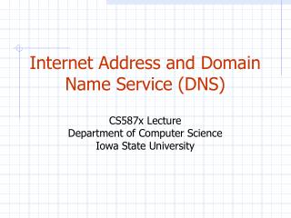 Internet Address and Domain Name Service (DNS) CS587x Lecture Department of Computer Science Iowa State University