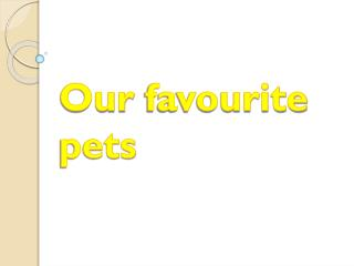 Our favourite pets