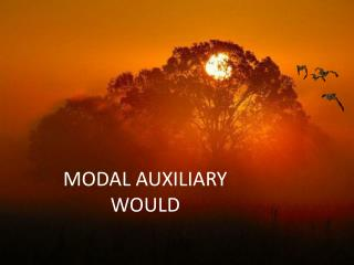 MODAL AUXILIARY WOULD