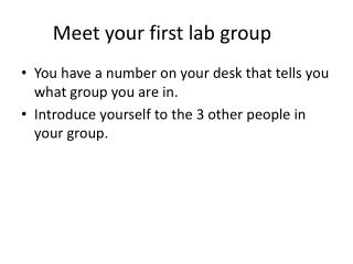 Meet your first lab group