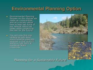 Environmental Planning Option