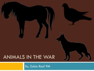 Animals in the war