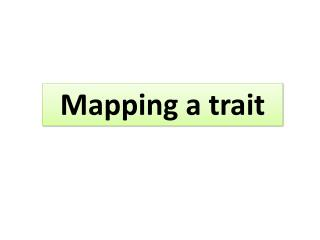 Mapping a trait