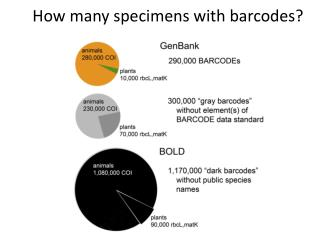 How many specimens with barcodes?