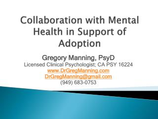 Collaboration with Mental Health in Support of Adoption