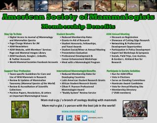 Stay Up To Date  Digital Access to  Journal of Mammalogy    and  Mammalian Species
