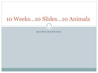 10 Weeks…10 Slides…10 Animals