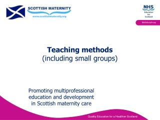 Teaching methods  (including small groups)
