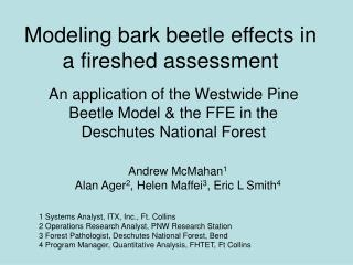 Modeling bark beetle effects in a fireshed assessment