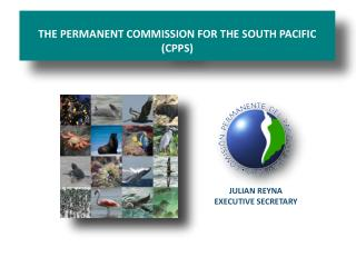 THE PERMANENT COMMISSION FOR THE SOUTH PACIFIC   (CPPS)