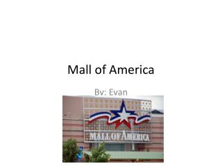 Mall of  A merica