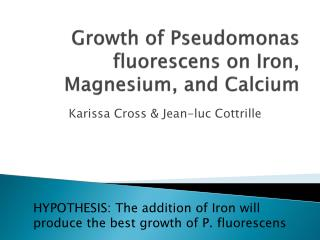 Growth of Pseudomonas  fluorescens  on Iron, Magnesium, and Calcium