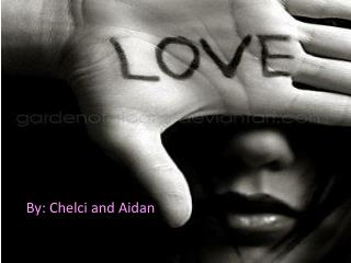 By:  Chelci  and Aidan