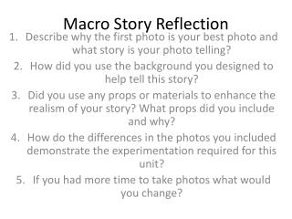 Macro Story Reflection