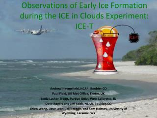 Observations of Early Ice Formation during  the ICE in Clouds Experi ment: ICE-T
