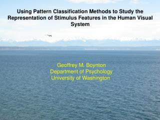 Geoffrey M. Boynton Department of Psychology University of Washington