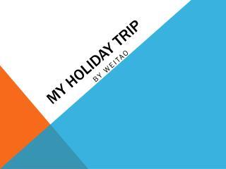 mY HOLIDAY Trip