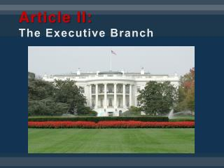 Article II: The Executive Branch