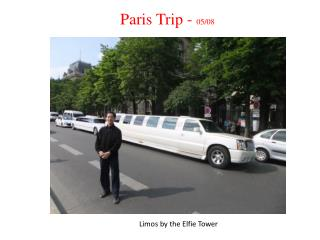 Limos by the Elfie Tower