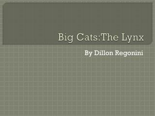 Big  Cats:The  Lynx