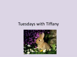 Tuesdays with  Tiffany