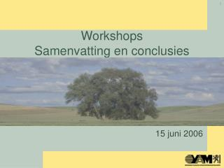 Workshops Samenvatting en conclusies