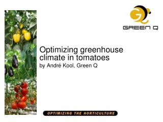 Optimizing greenhouse climate in tomatoes by André Kool, Green Q