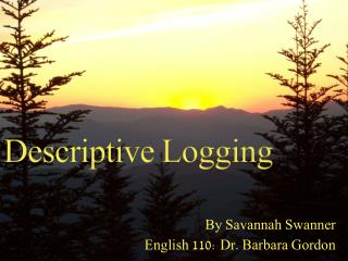 Descriptive Logging