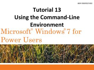 Tutorial 13 Using the Command-Line Environment