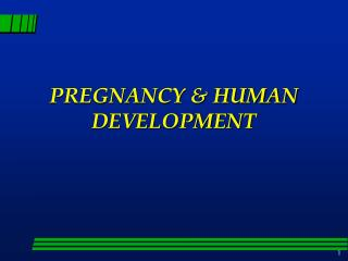 PREGNANCY & HUMAN DEVELOPMENT