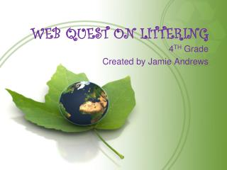 WEB QUEST ON LITTERING