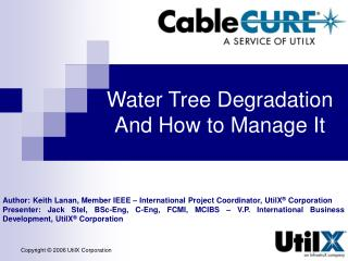 Water Tree Degradation And How to Manage It