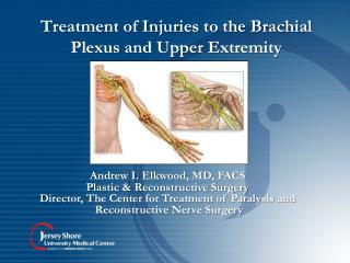 Treatment of Injuries to the Brachial Plexus and Upper Extremity