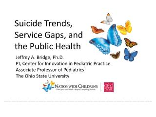 Suicide Trends,  Service Gaps, and  the Public Health