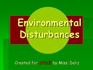 Environmental Disturbances