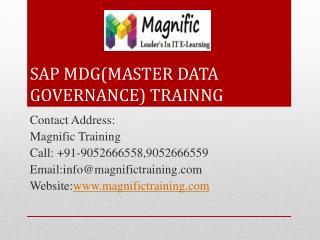 sap mdg(master data governance) training