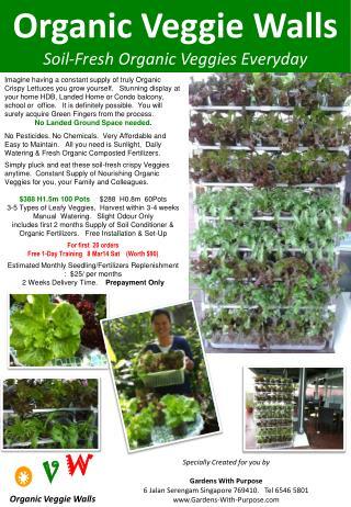 Organic Veggie Walls Soil-Fresh Organic Veggies Everyday