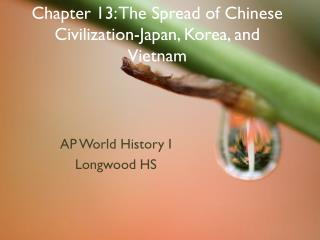 Chapter 13: The Spread of Chinese Civilization-Japan, Korea, and Vietnam