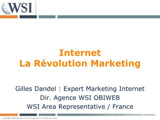 Internet La Révolution Marketing