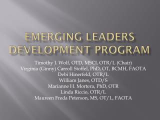 Emerging leaders development program