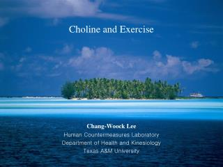 Choline and Exercise