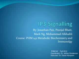 IP3-Signalling