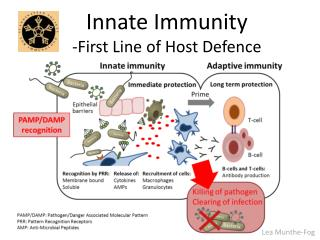 Innate Immunity  -First Line of Host Defence