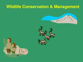 Wildlife Conservation & Management