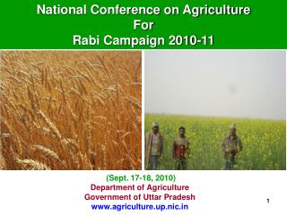 Department of Agriculture Government of Uttar Pradesh agriculture.up.nic