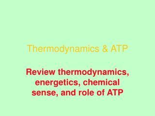 Thermodynamics & ATP